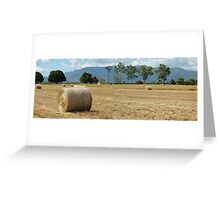 All rolled up and nowhere to go Greeting Card