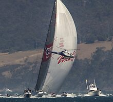 Wild Oats XI winning 2014 Sydney to Hobart race by Odille Esmonde-Morgan