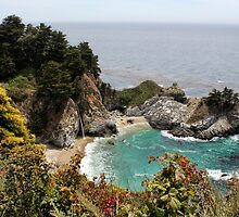 McWay Falls by Judy Vincent