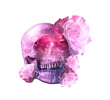 Pink skull Photographic Print
