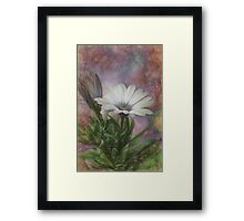 Sketchy Daisy In Mother Of Pearl Framed Print