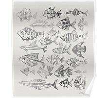 Silver Inked Fish Poster