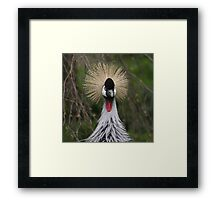 Who?......Me! Framed Print