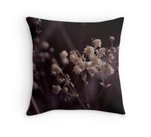 Of Death and Dying Throw Pillow
