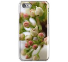 Spring Pear Tree Flowering iPhone Case/Skin