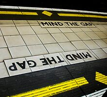 mind the gap by larissa tapler