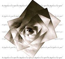 La Symphonie d'un regard by Tom Meyers