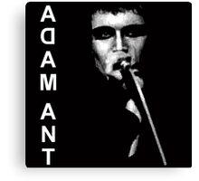 Punk Adam Ant Canvas Print