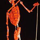 Red Skeleton by satsumagirl