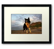 An Old Seadog. Framed Print