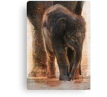Vintage Asian Baby Elephant Canvas Print