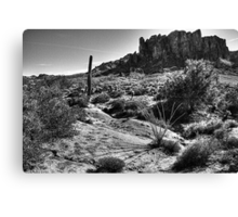 Sonoran Desert at Lost Dutchman State Park Arizona Canvas Print