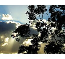Silhouette and Sunrays....... Photographic Print
