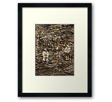 Children Of The Rocks. Framed Print