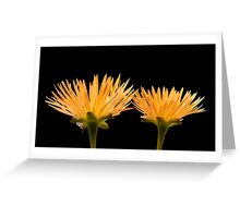 Golden Ice Plant Greeting Card