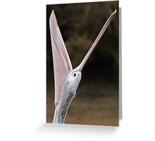 Australian Pelican ~ What a Mouth  Greeting Card
