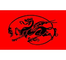 Mythical Dragon, Year of the Dragon Design Photographic Print