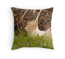 white rooster Throw Pillow