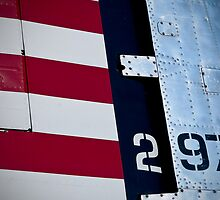 Red, White & Blue by James Howe