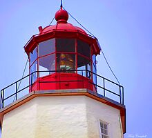 Top of the Light by Mary Campbell