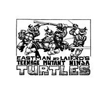 TMNT original Photographic Print