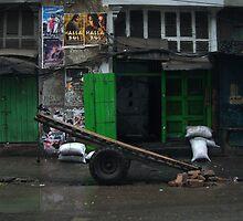 Calcutta green  by Lisa Bow