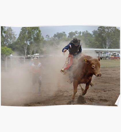 Bucking Bull and Bull-Dust Poster