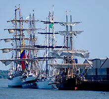 Tall Ships Home Again by Mary Campbell