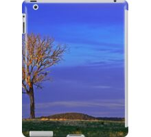 All Alone On The Hill iPad Case/Skin