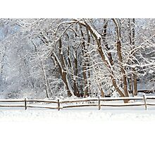 Winter - Westfield, NJ - Snow Day Photographic Print