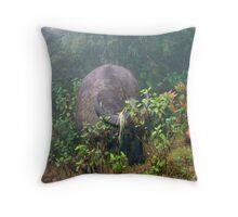 Buffalo in the mist - Sapa Throw Pillow