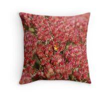 Ladybug Dance Throw Pillow