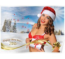Sexy Santa's Helper girl great image for creating Holiday Greeting postcards or computer wallpapers Poster