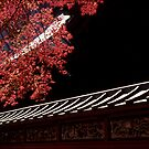 Shrine, Mount Takao by prbimages