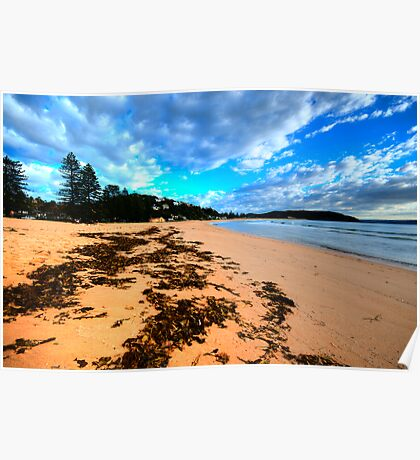 Palmie - Sydney Beaches - Palm Beach, - The HDR Series - Sydney,Australia Poster