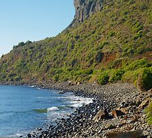 Godfrey's Beach at Stanley, Tasmania by mick8585