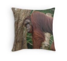 Tourists.... Throw Pillow