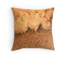 baby chicks Throw Pillow