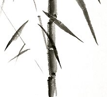 Bamboo 1 by Tom Meyers