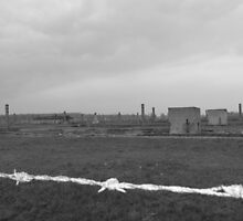 Auschwitz-Birkenau I by Rachael Lynch