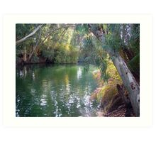 Jordan river southern of Sea of Galilee Art Print