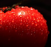 Fresh Tomato by Ann-Marie Metcalfe