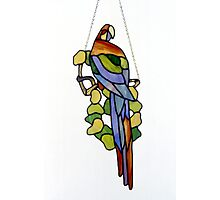 Stained Glass Parrot Photographic Print