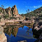 Pinnacles Reflections by Barbara  Brown