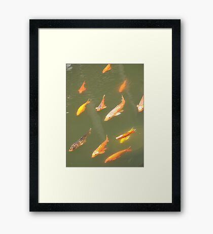 Jin yu Framed Print