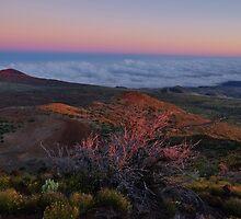 Mauna Kea Majesty by Randy Richards