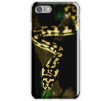 Jungle Carpet Python iPhone Case/Skin