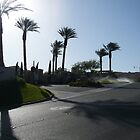 Goodbye Sun, Goodbye Lake Las Vegas! by Snoboardnlife