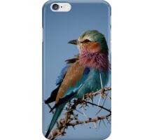Lilac Breasted Roller iPhone Case/Skin