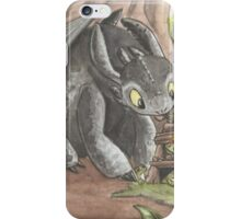 Toothless & Stitch iPhone Case/Skin